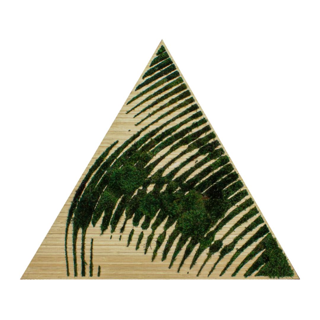 Triangle Eye (2017) - 2Alas + Paloma Teppa Collaboration