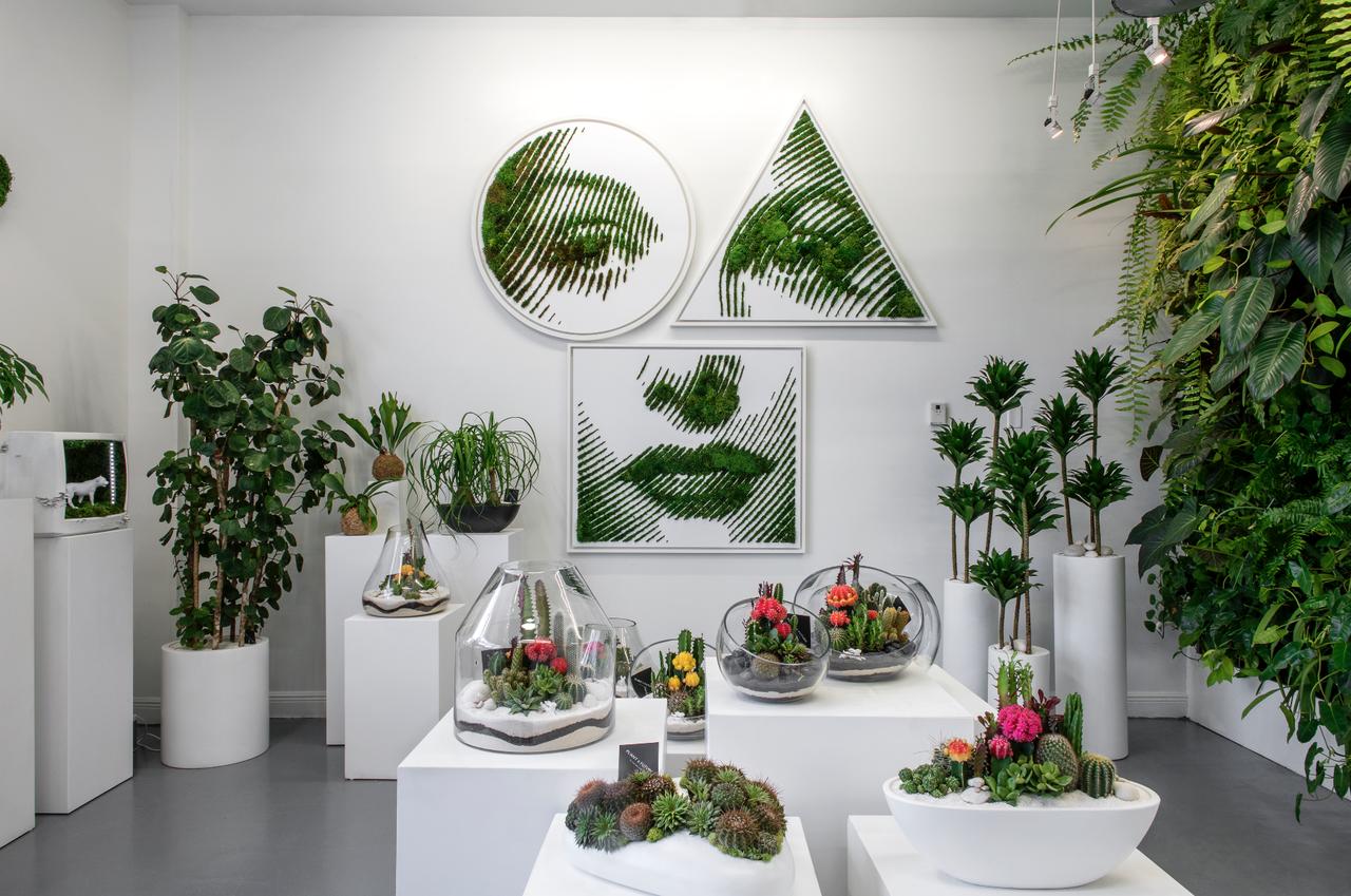 TRIPTYCH moss art