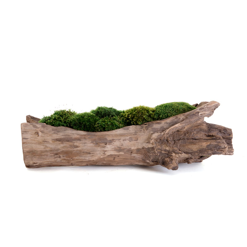 "Natural Wood Trough Short - Moss (16"")"