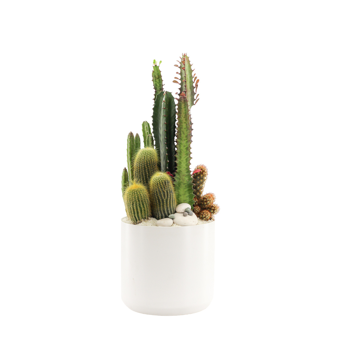 """Germany Round Small White - Green Garden (14""""H x 7"""" D)"""