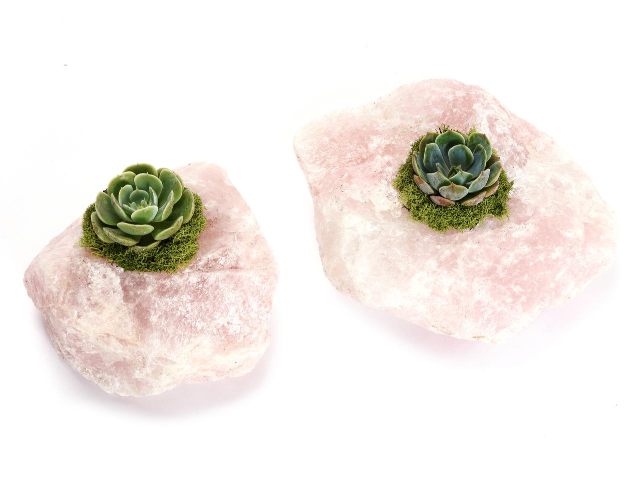 """Rose Quartz with Succulent (5"""" H x 5"""" W)"""