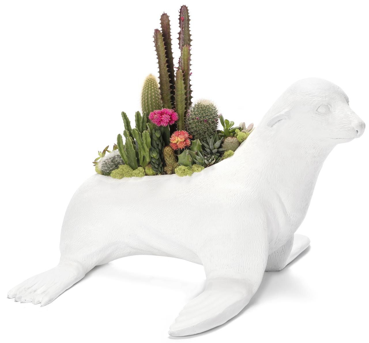 """Seal Garden (28"""" W x 17"""" H)"""