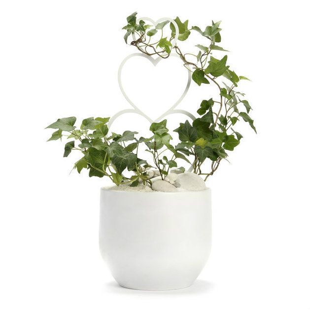 Germany Round Large White - Ivy with Heart Trellis