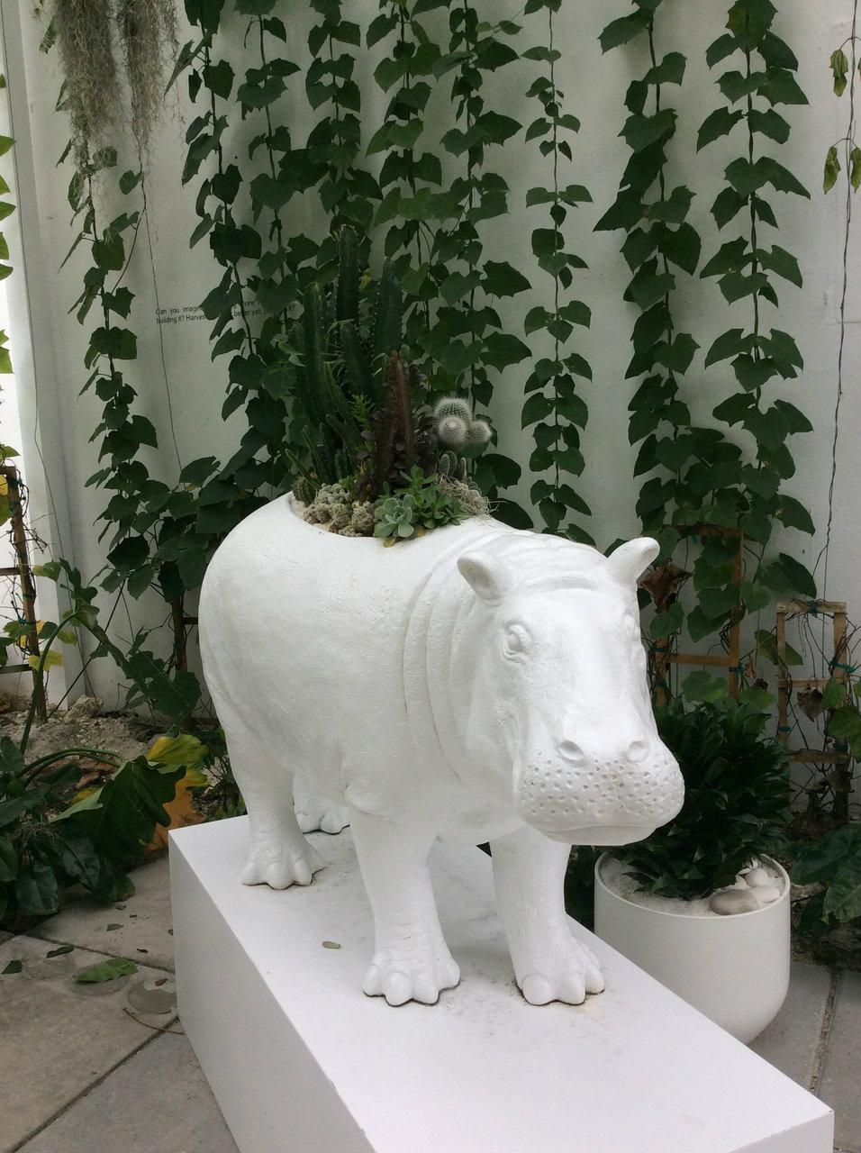 Hippo Garden