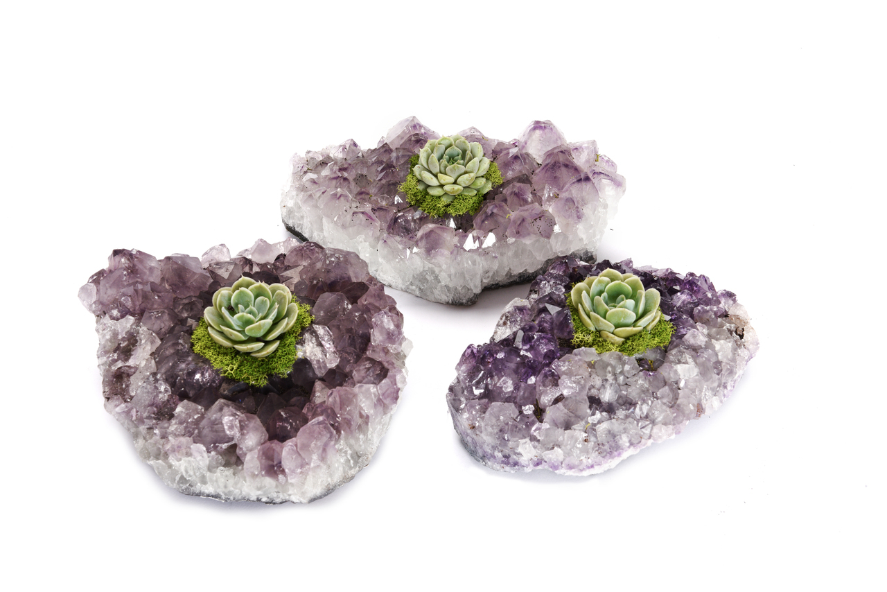 AMETHYST CRYSTAL PLANTER WITH SUCCULENT AND MOSS