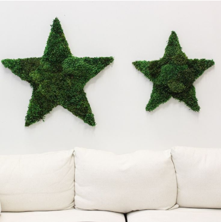 "Hollywood Star Large (27"" H x 29"" W)"