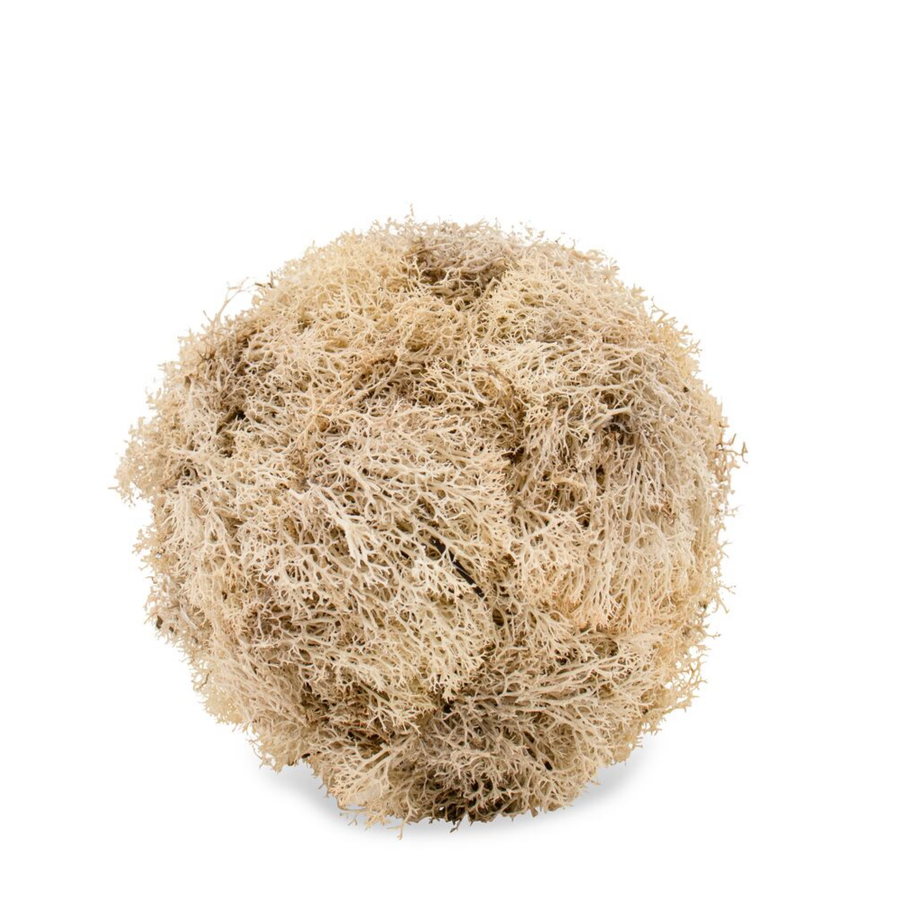 White Moss Sphere - Medium (6'')