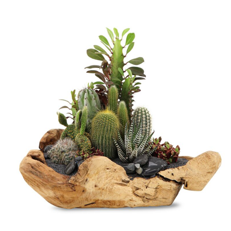 "Natural Wood Bowl Small (14"" H) - Green Garden (Black Top)"