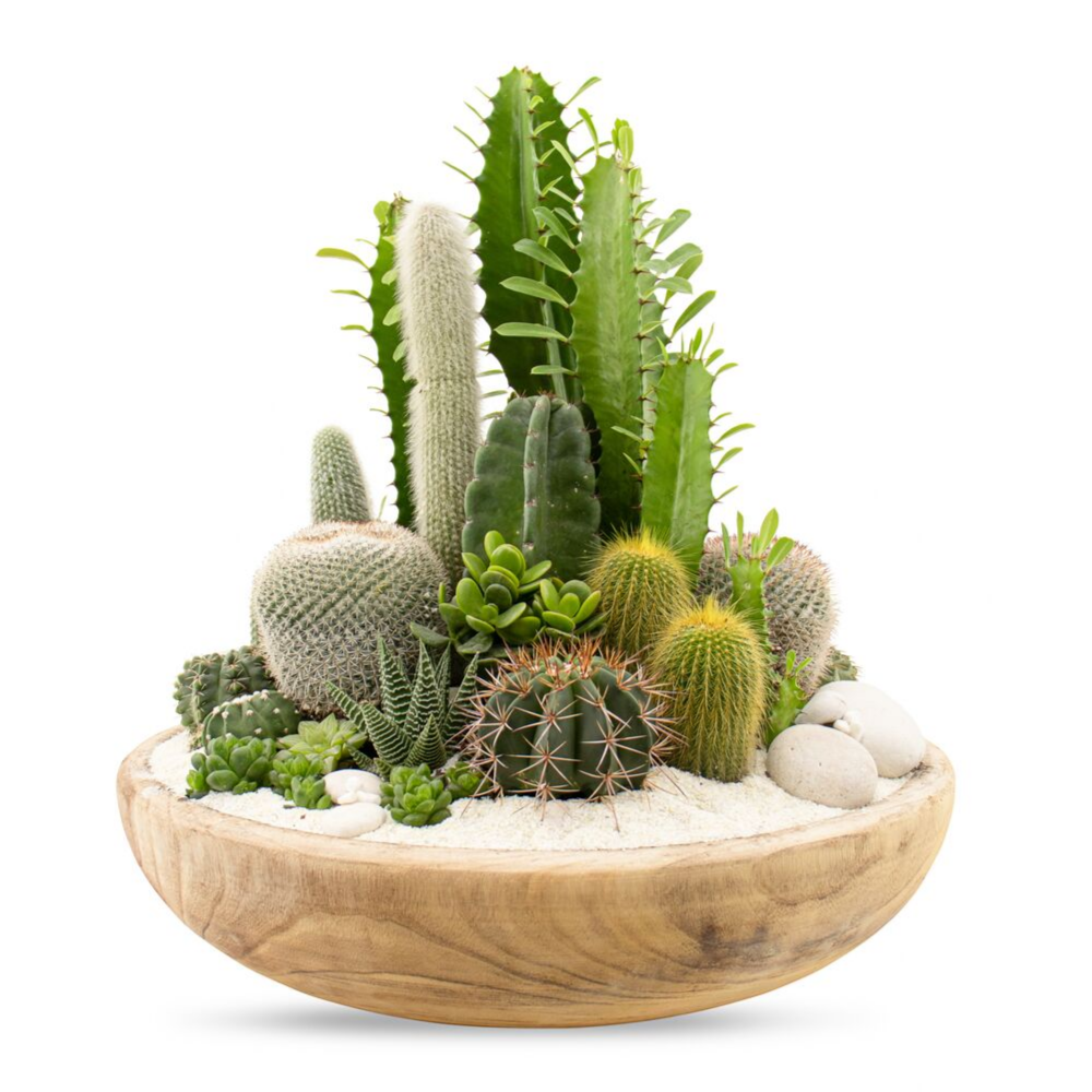 "Tulum Green Garden (Large - 18"")"