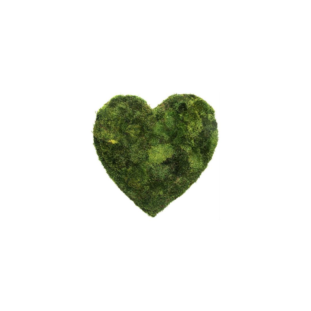 """Moss Heart Mini - 8"""""""