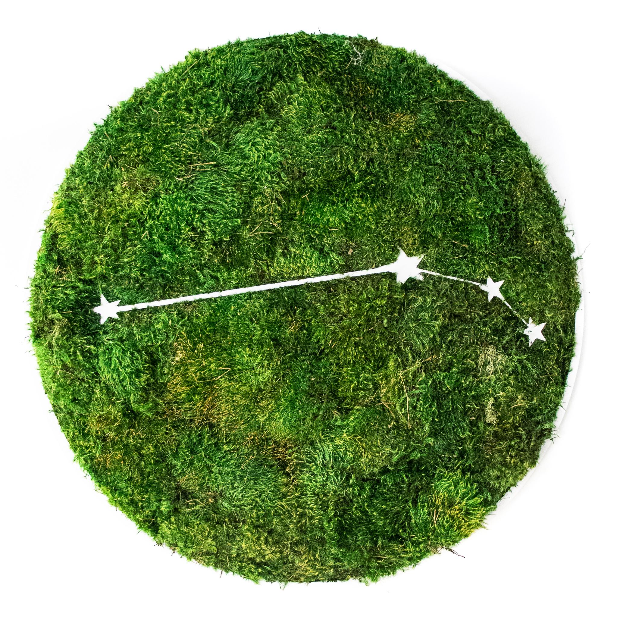 """Aries Constellation - Moss Wall Art (30"""" Diameter)"""