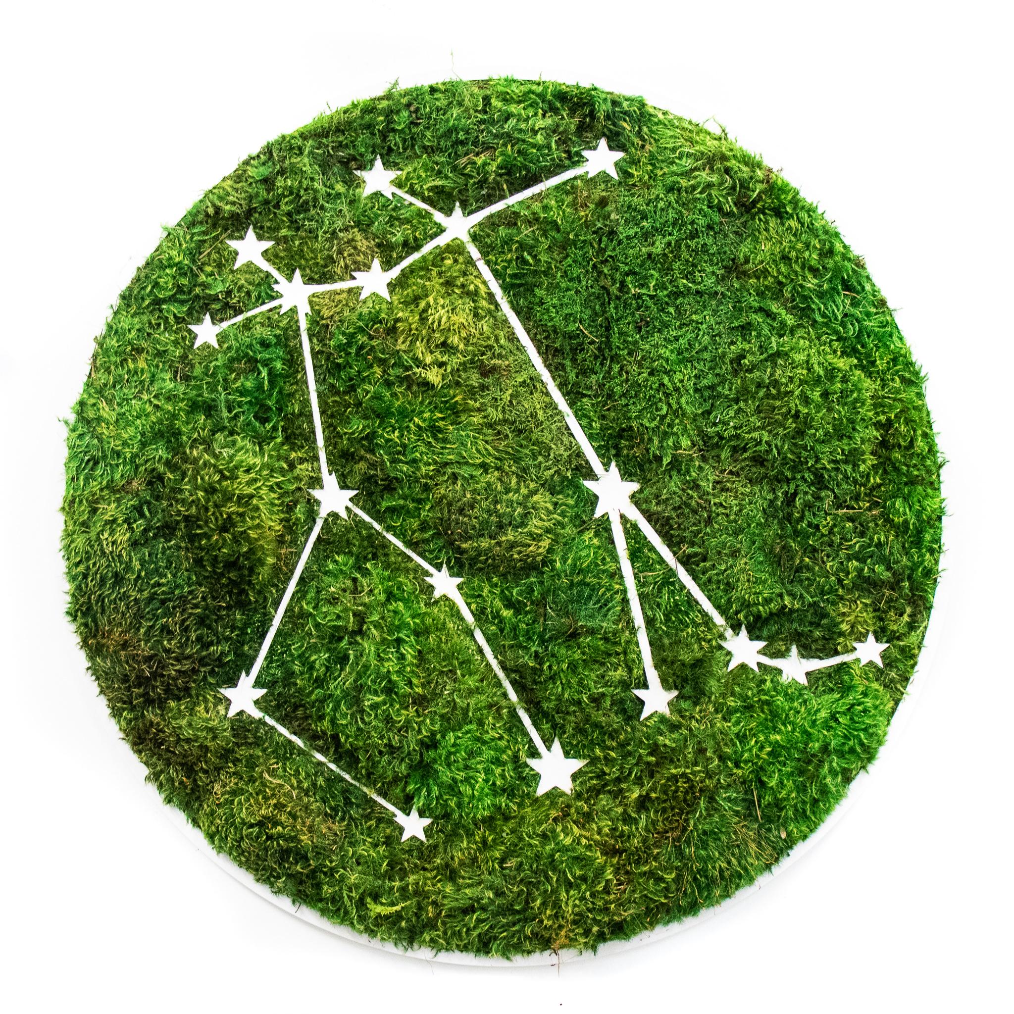 "Gemini Constellation - Moss Wall Art (30"" Diameter)"