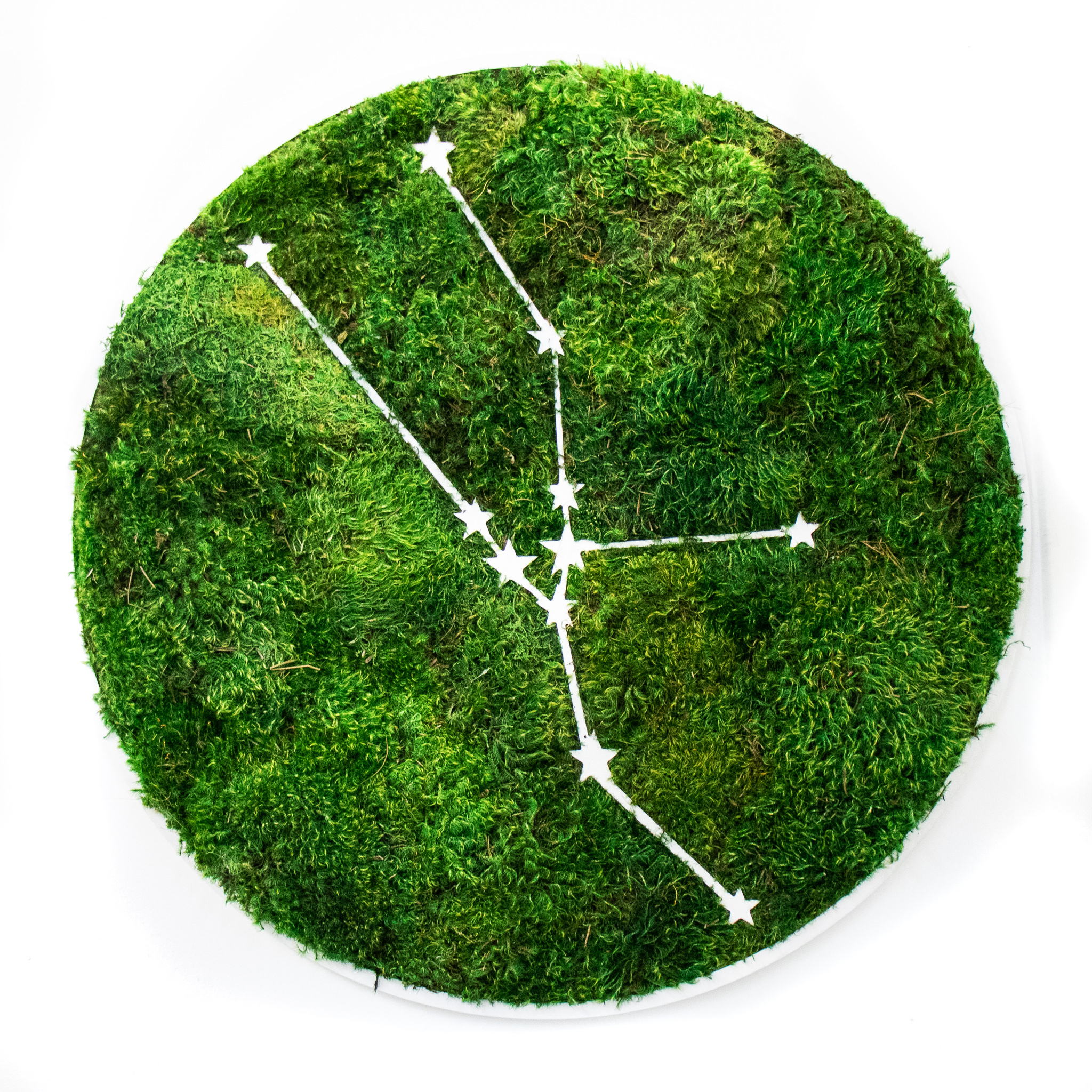 "Taurus Constellation - Moss Wall Art (30"" Diameter)"