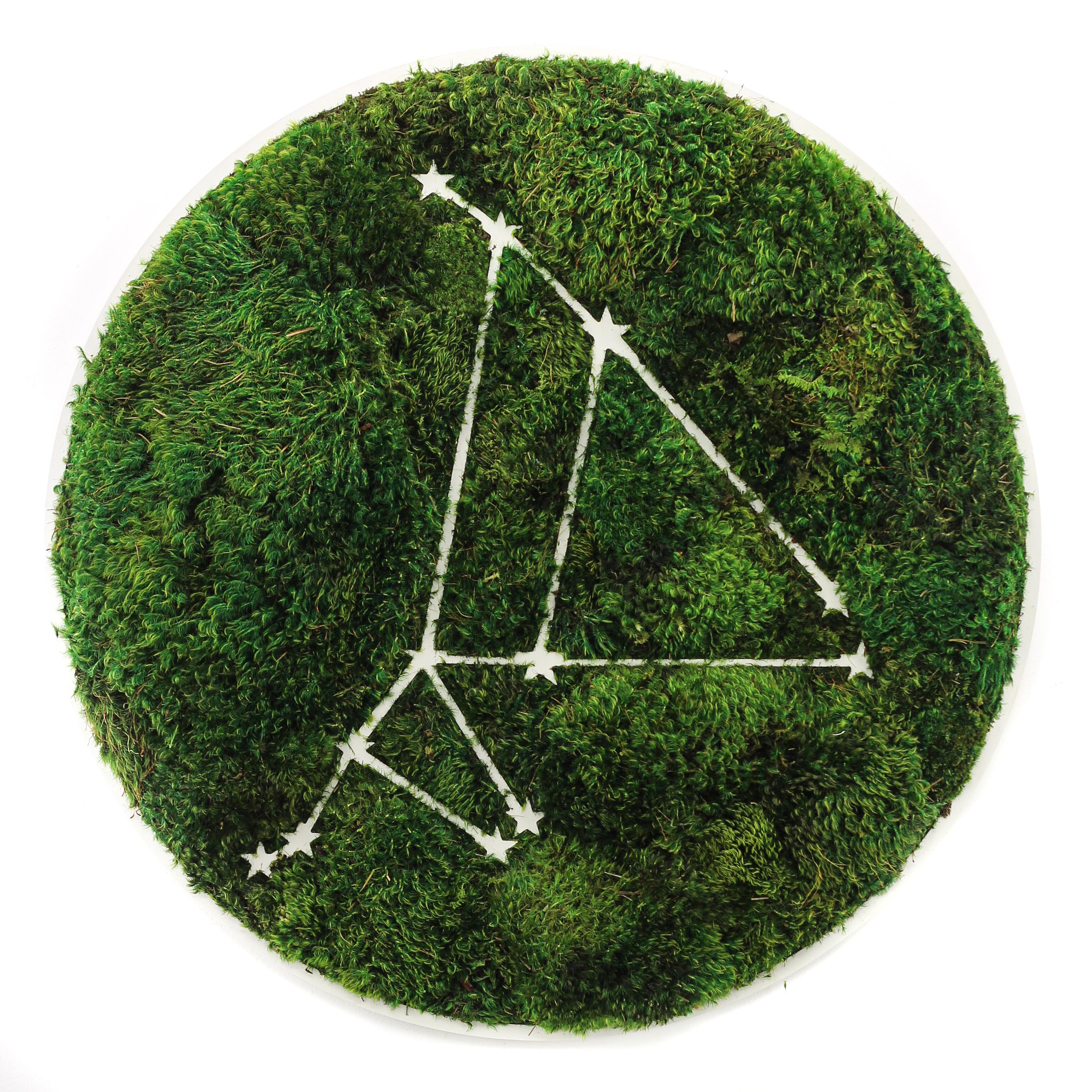 """Capricorn Constellation - Moss Wall Art (30"""" Diameter)"""