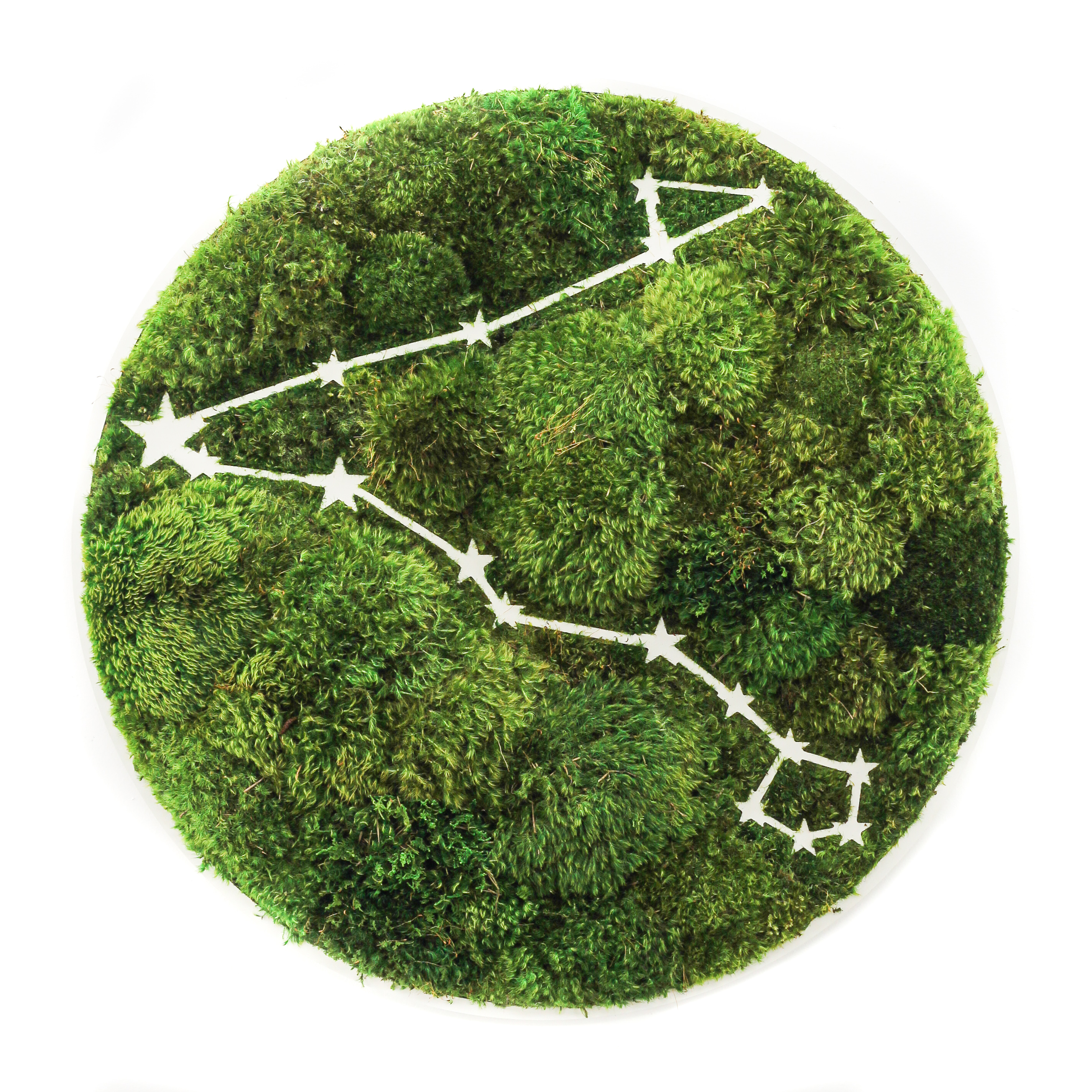 "Pisces Constellation - Moss Wall Art (30"" Diameter)"