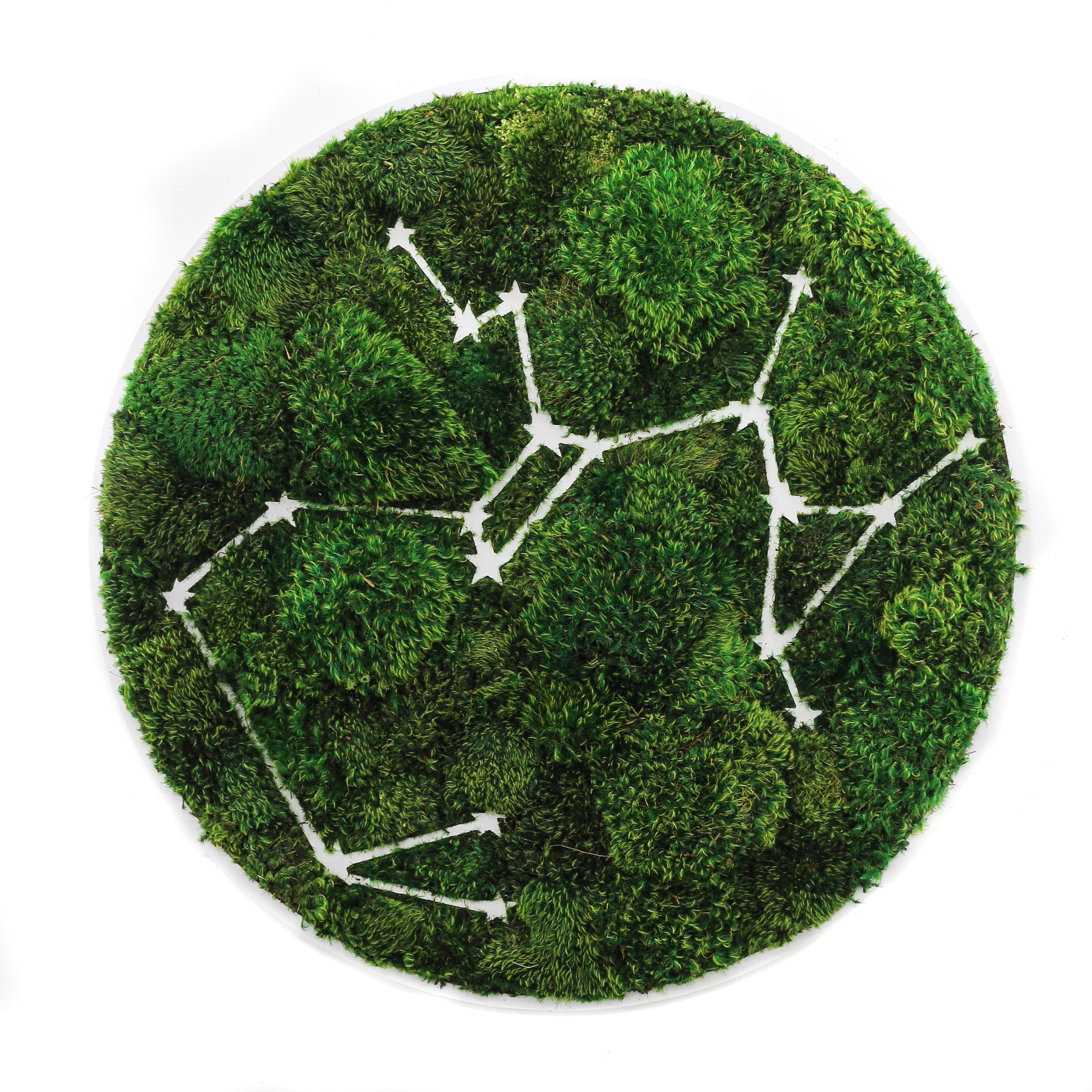 "Sagittarius Constellation - Moss Wall Art (30"" Diameter)"
