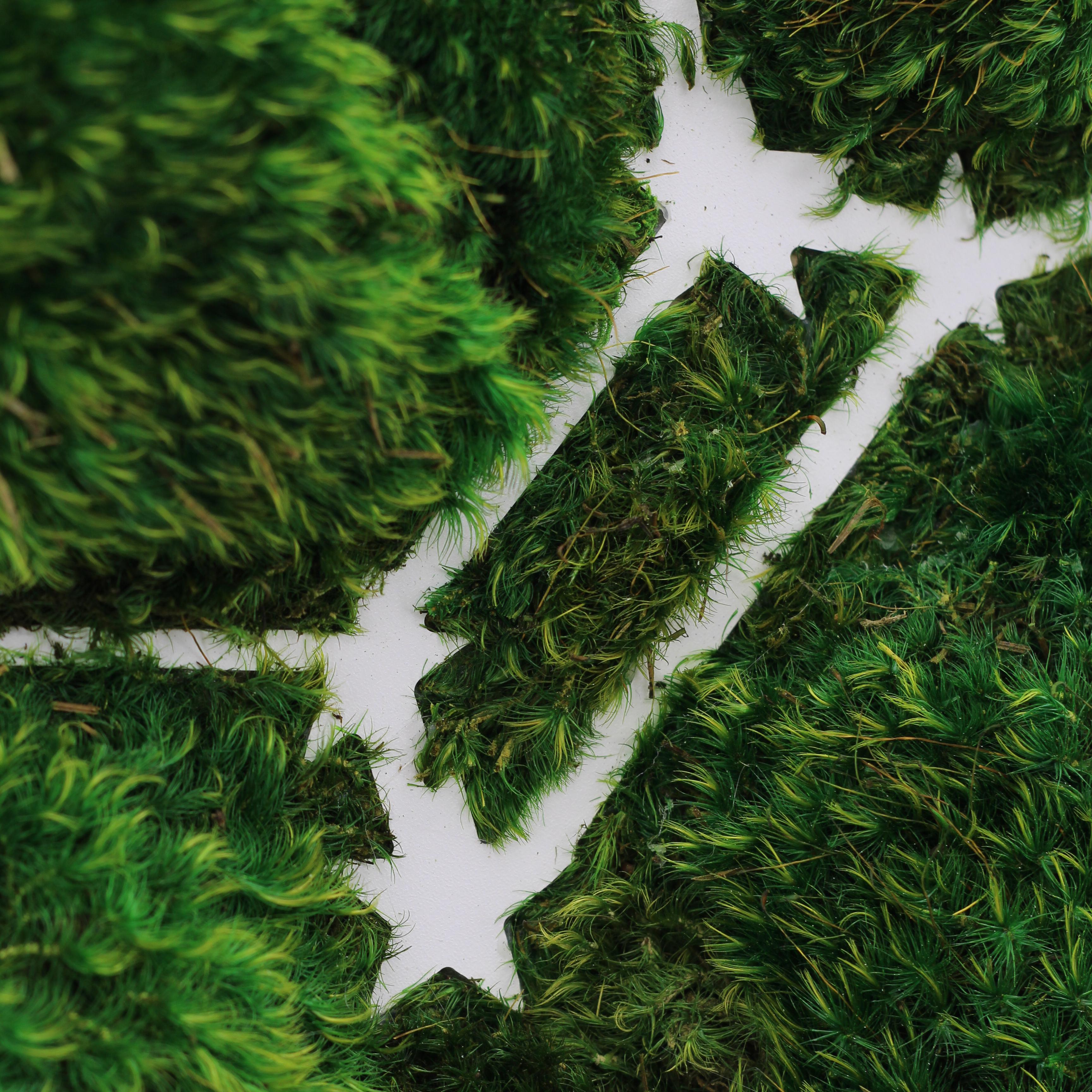 "Sagittarius Constellation - Moss Wall Art (30"" Diameter)"