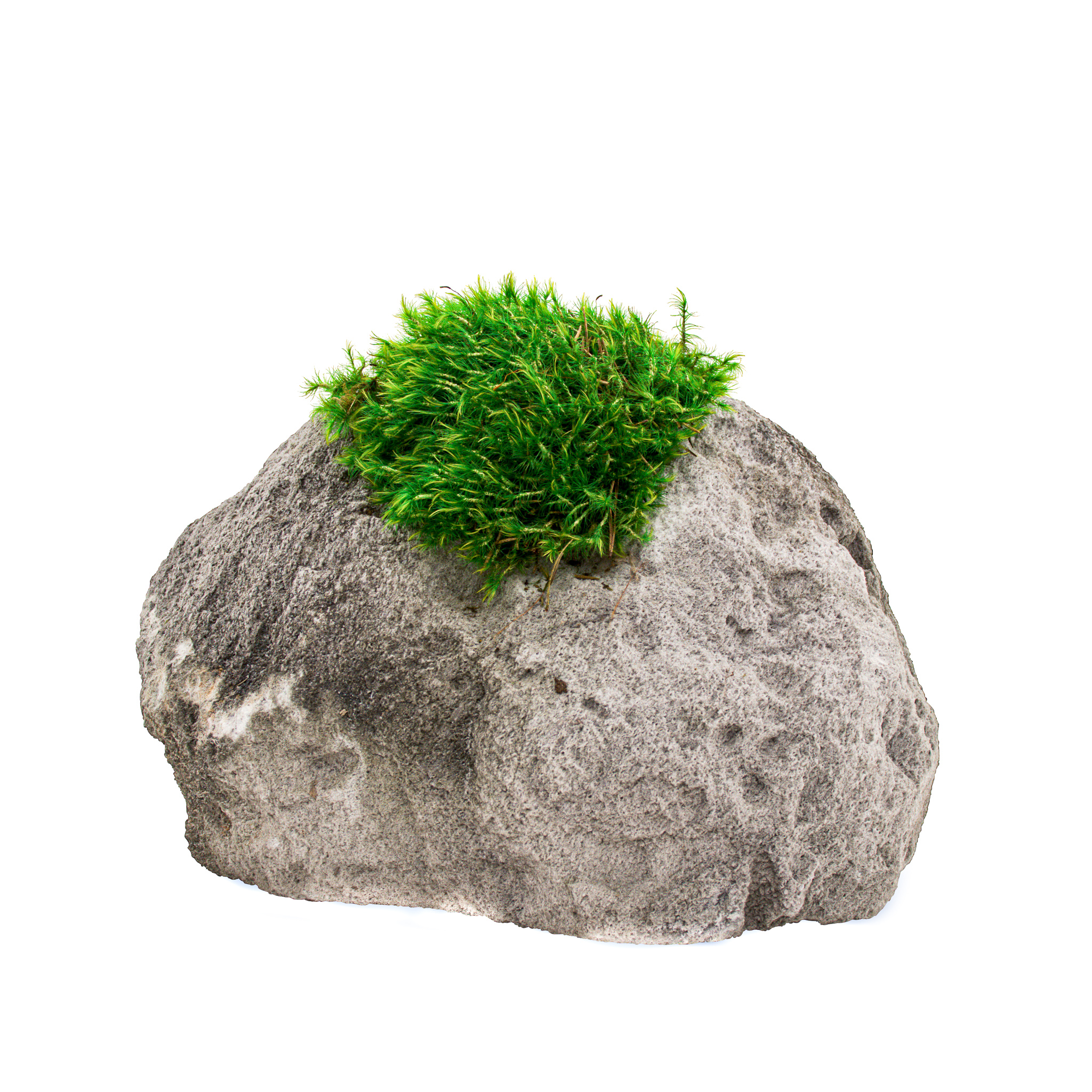 """Feather Rock Small - Moss (8"""" H x 8"""" D)"""