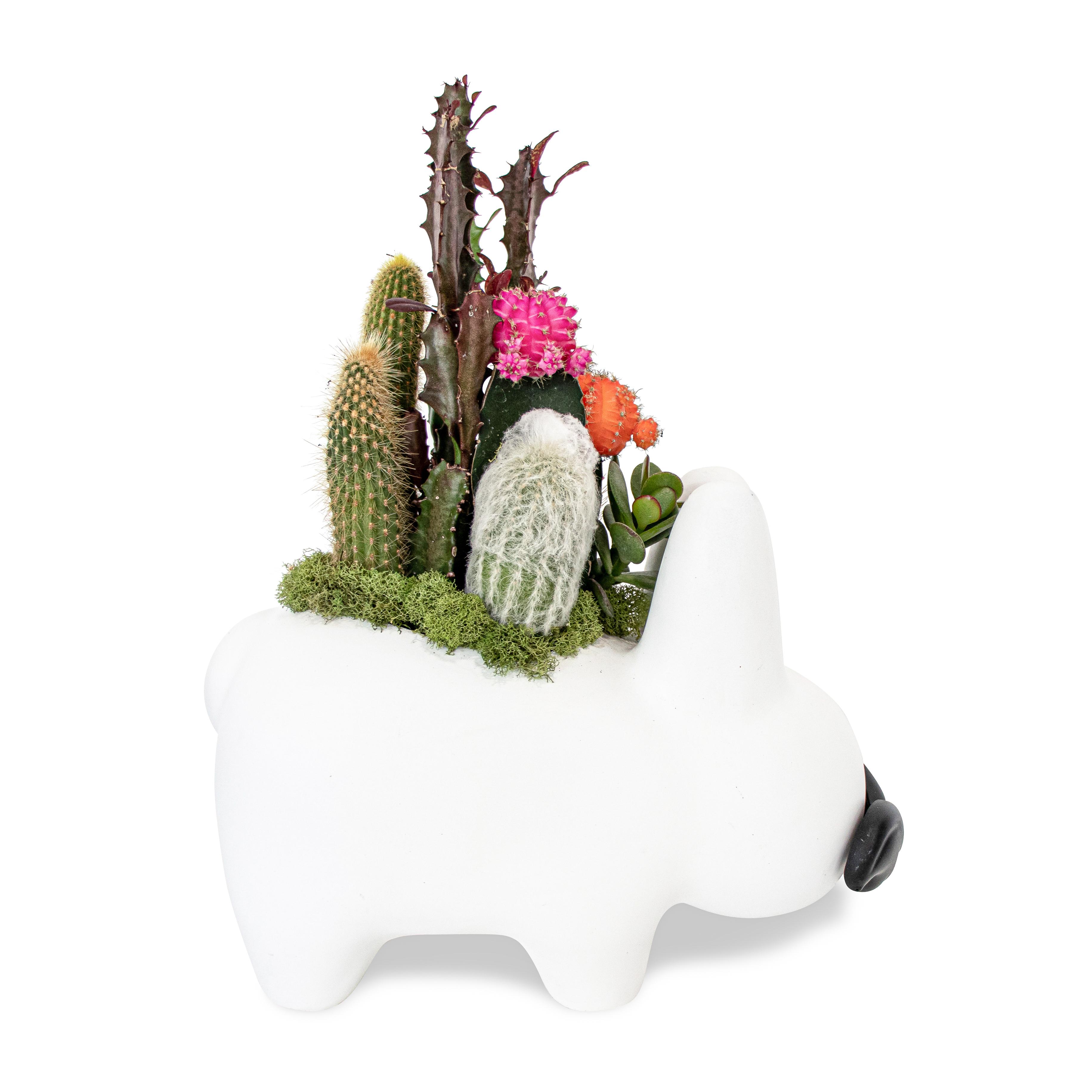 """Labbit Garden White  (10"""" W x 12"""" H)"""