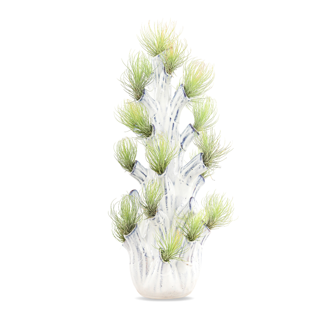 """Airplant Tree Trunk - Large (21"""" H x 8"""" D)"""