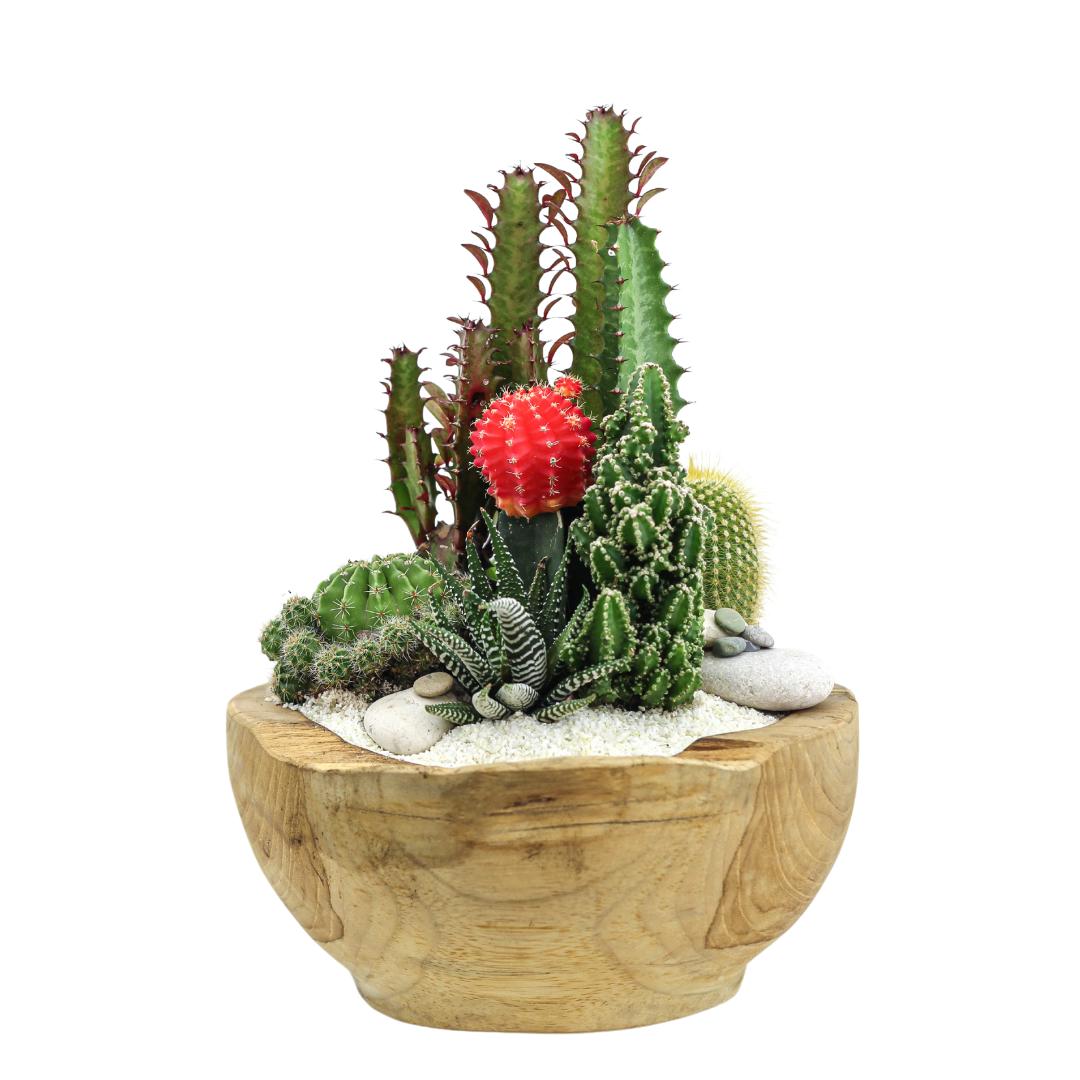 Natural Wood Bowl Mini - Garden
