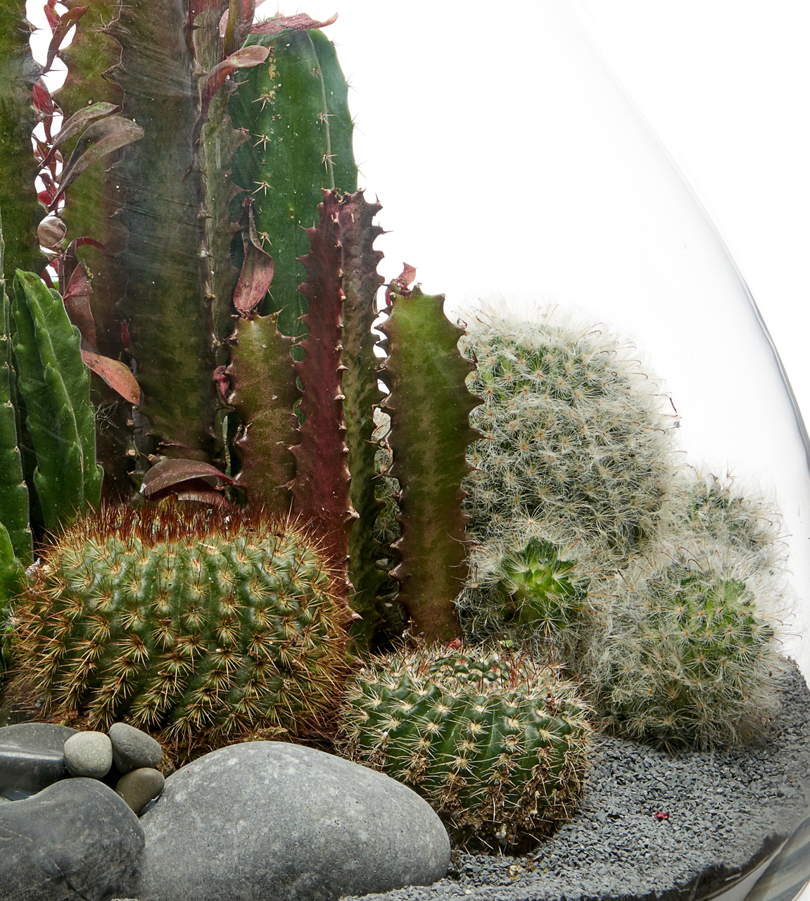 "Handblown Terrarium Large - Black (18"" H x 12"" D)"