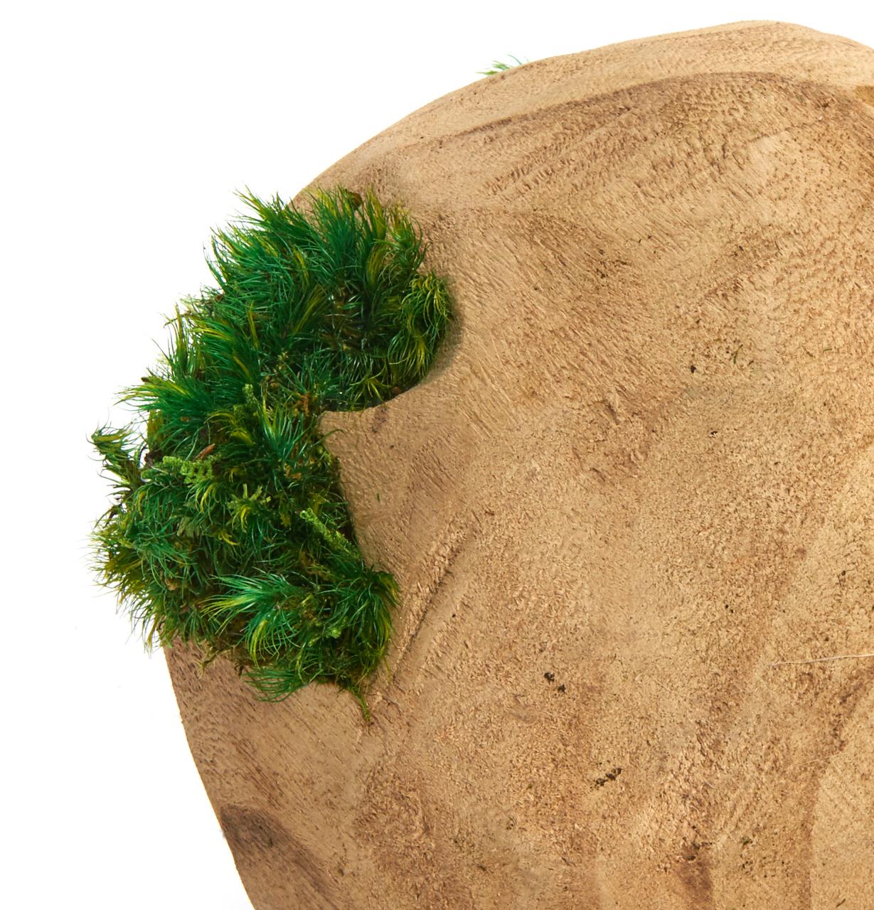 "Natural Wood Orb Medium - Moss (6"")"