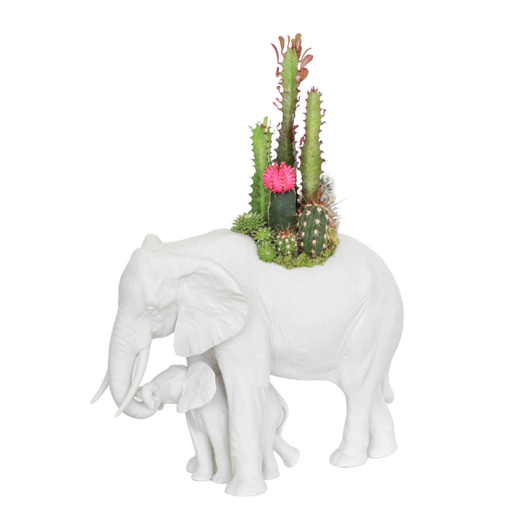 Lladró - Elephant Figurine Planter