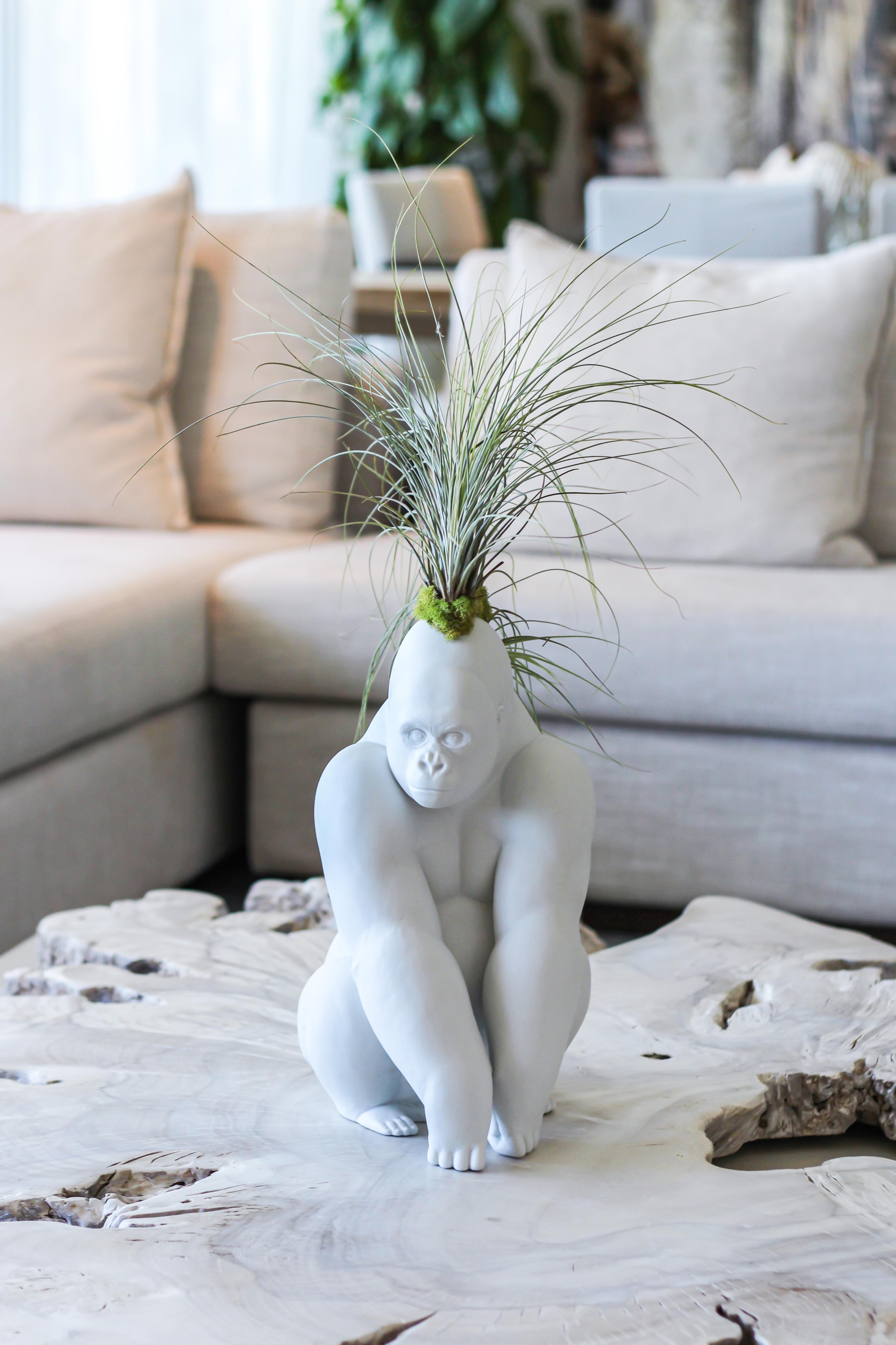 Lladró - Gorilla Figurine Planter