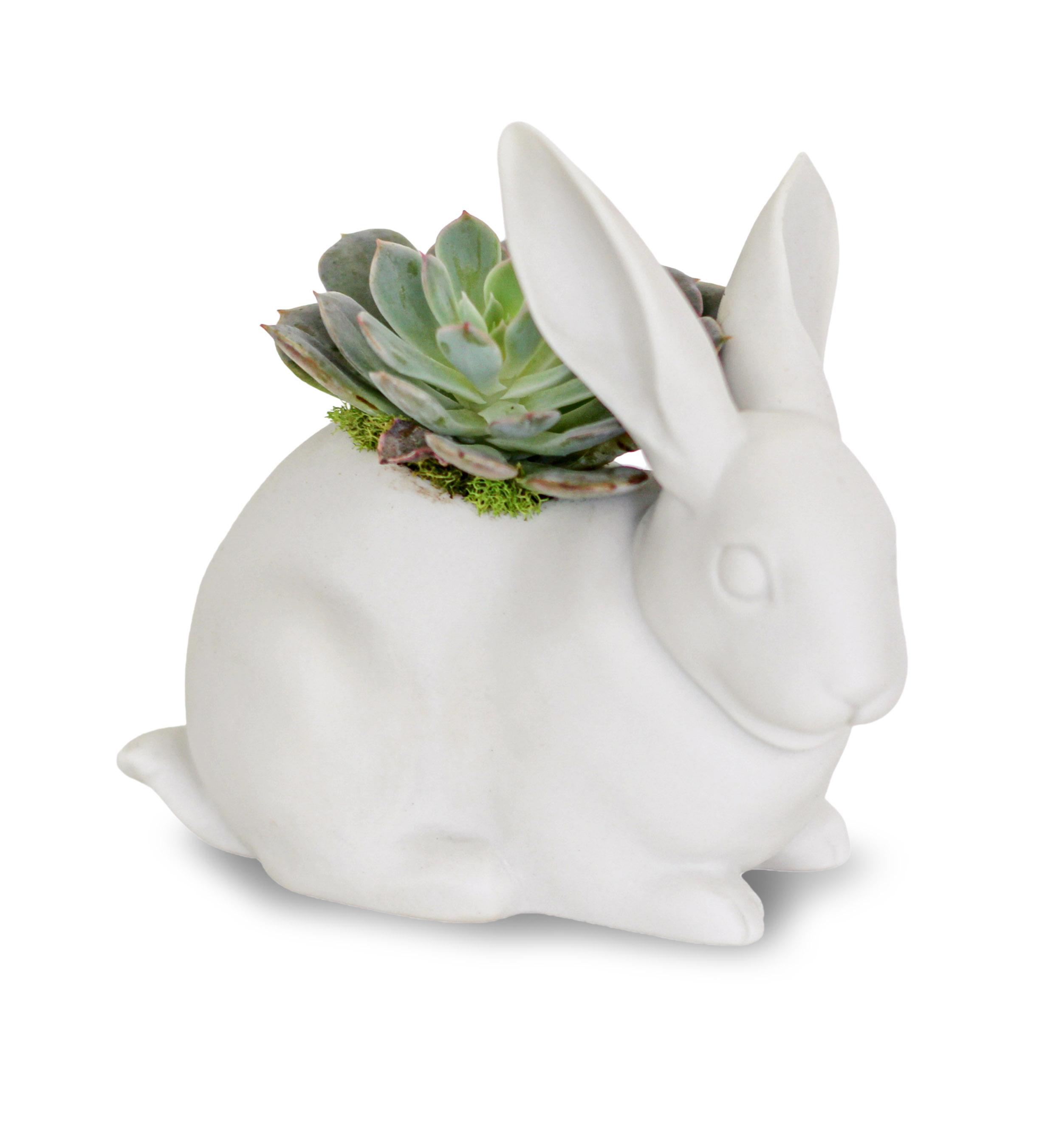 Lladró - Bunny Figurine Planter
