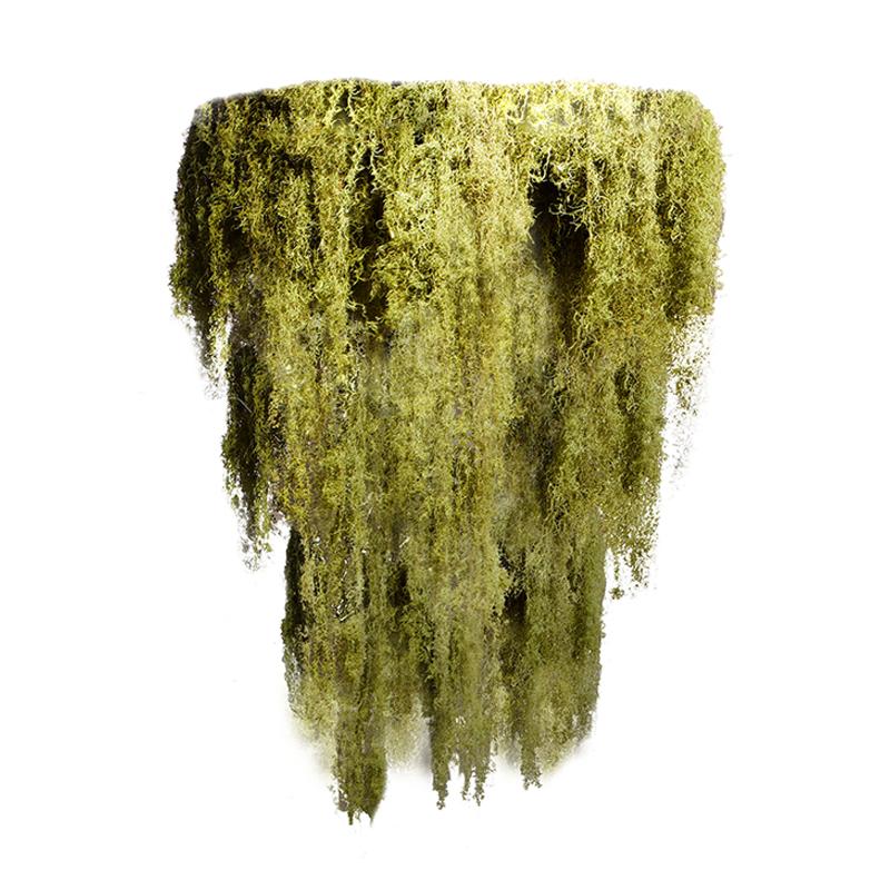 """Moss Chandelier - 3 Tier (Medium - 41"""")"""