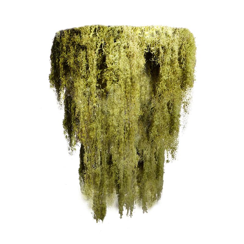 "Moss Chandelier - 3 Tier (Small - 31"")"