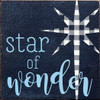 Cute Wooden Christmas Sign | Star of Wonder | In Old Blue with Light Blue & Cottage White
