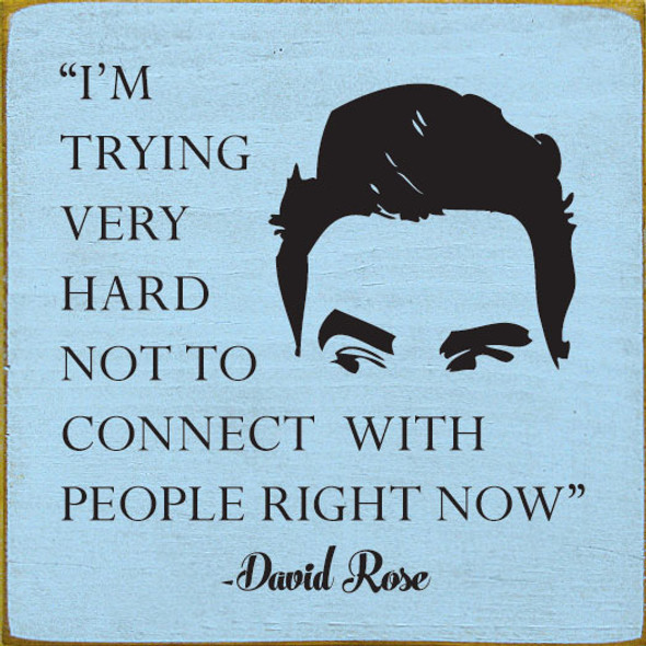 I'm trying very hard not to connect with people right now. - David Rose | Funny Wholesale Signs | Sawdust City Wood Signs