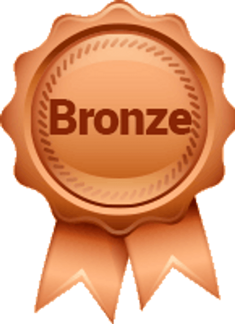 Bronze Sponsorship Level $400