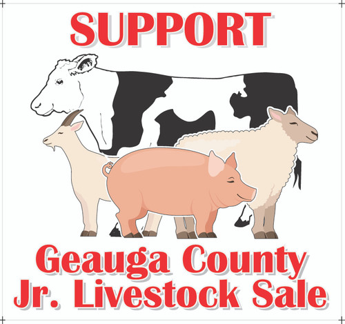 Fair Magnet Jr. Fair Livestock Sale