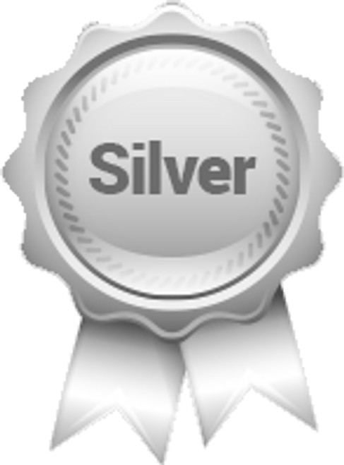 Silver Sponsorship Level $500