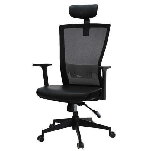KLIIG FLEXLUMBAR OFFICE CHAIR (Best value for money with excellent back support, high armrests and lockable tilt.)