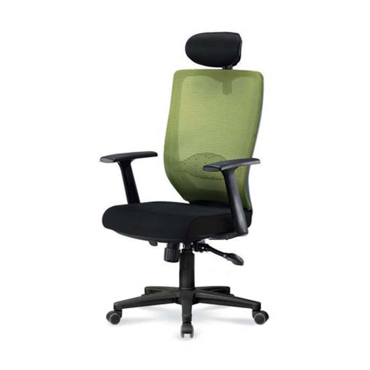 ADAM MESH CHAIR (Ergonomic design & great back support chair with adjustable armrest.)