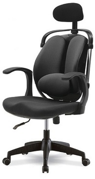 ergonomic-large-dual-back-chair.jpg