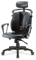 ergonomic-luxury-dual-back-chair.jpg