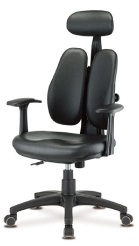 ergonomic-small-dual-back-chair.jpg
