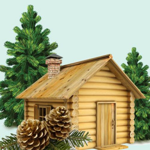 Balsam & Cedar