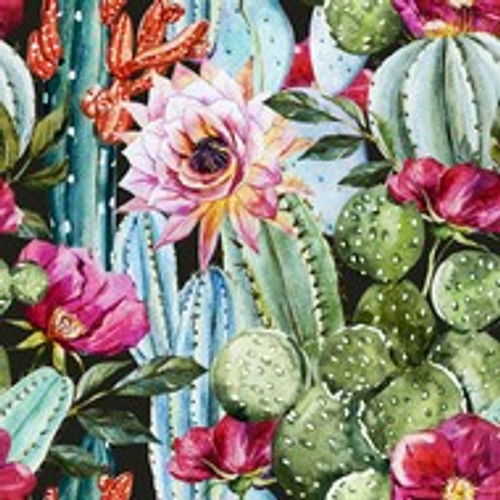 Baja Catus Blossom