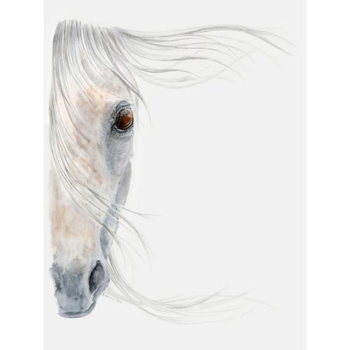 Equine Dream Canvas Art