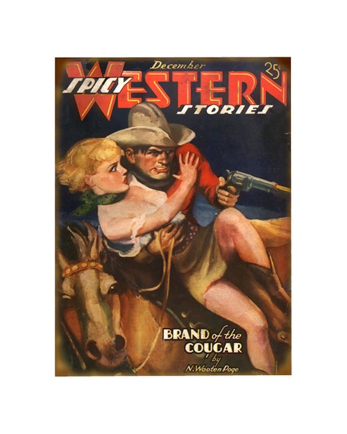 Spicy Western Stories Sign