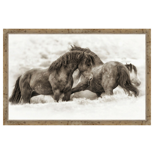 Brothers Framed Canvas Wall Art