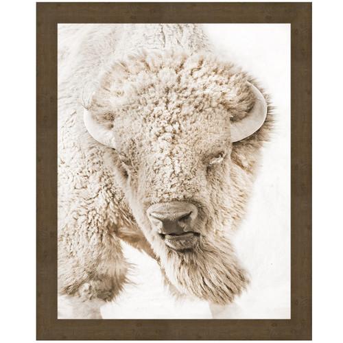 Bull Watch Canvas Art