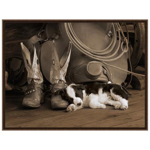 Cowboy Puppy Sepia Framed Canvas
