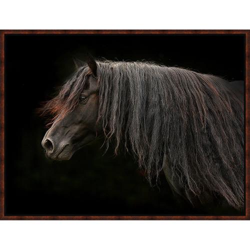 Dark Horse Framed Canvas
